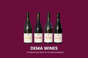 """Read more about the article """"Créateurs de vin de partage"""" et démocrate : entreprendre dans le vin avec DEMA Wines"""