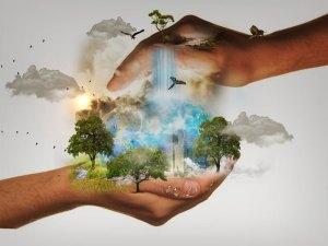 Ma meilleure action pour prendre soin de l'environnement
