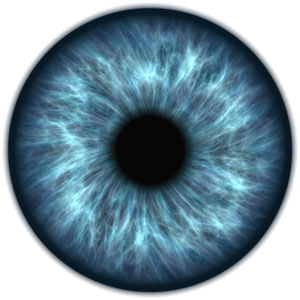 la macula, maladie de l'oeil