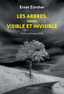 Les arbres entre visibles et invisibles
