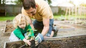 Read more about the article 1001 petits moments de jardinage avec ses enfants pour du temps de qualité