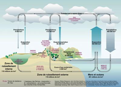 cycle de l'eau version ONU