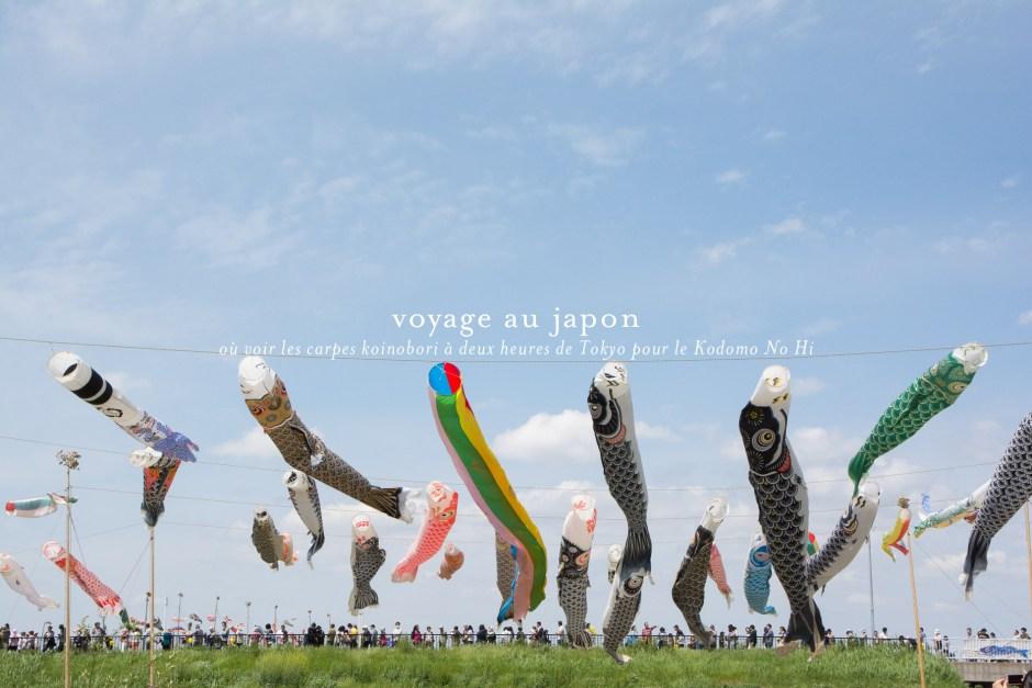 kodomo-no-hi-koinobori-autour-tokyo-kokobun-river