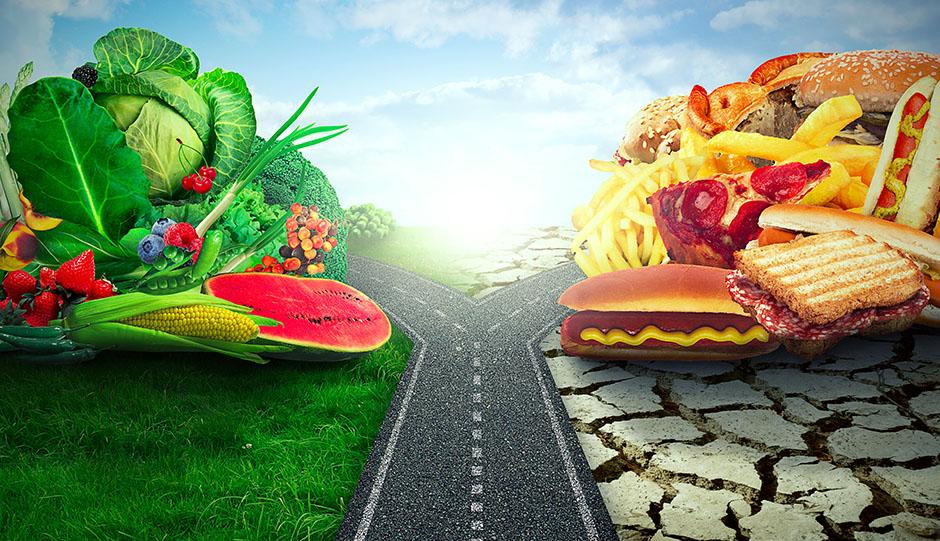 Une route sépare une bonne alimentation composé principalement de végétaux et une mauvaise composé de fast food, Tout savoir sur l'alimentation
