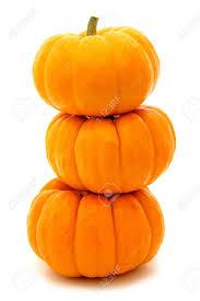 pumpkin le reve spa