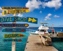 Bonaire, un petit coin de paradis