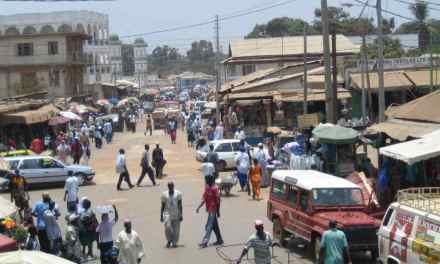 Gambie : quatre chiens dévorent le fils du président élu
