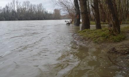 Intempéries : Toulouse sous les eaux ?