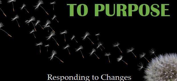 Moving from Panic to Purpose program