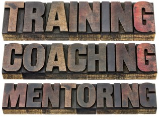 teaching, training, coaching  and mentoring - a collage of isola
