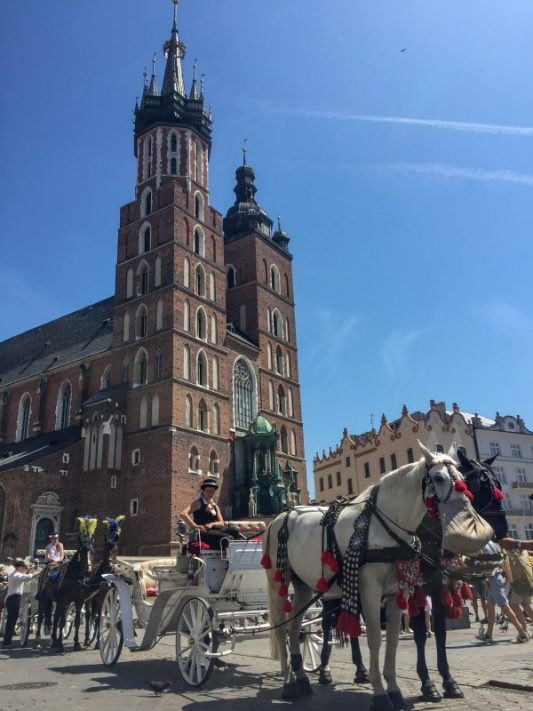 St. Mary's Basilica and horses