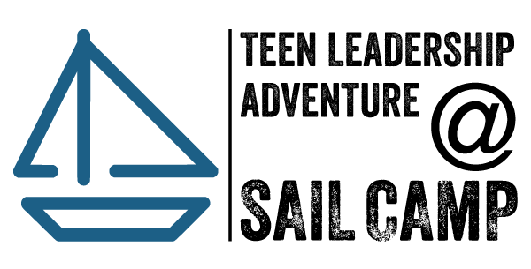 Development institute llc teens and — 9