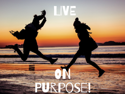 G2G: Purpose and Meaning Coach