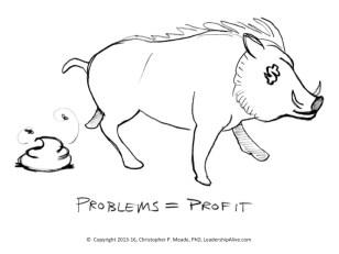 Problems equal profit Chris Meade