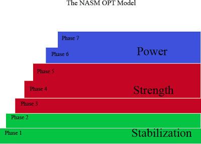 OPT Model