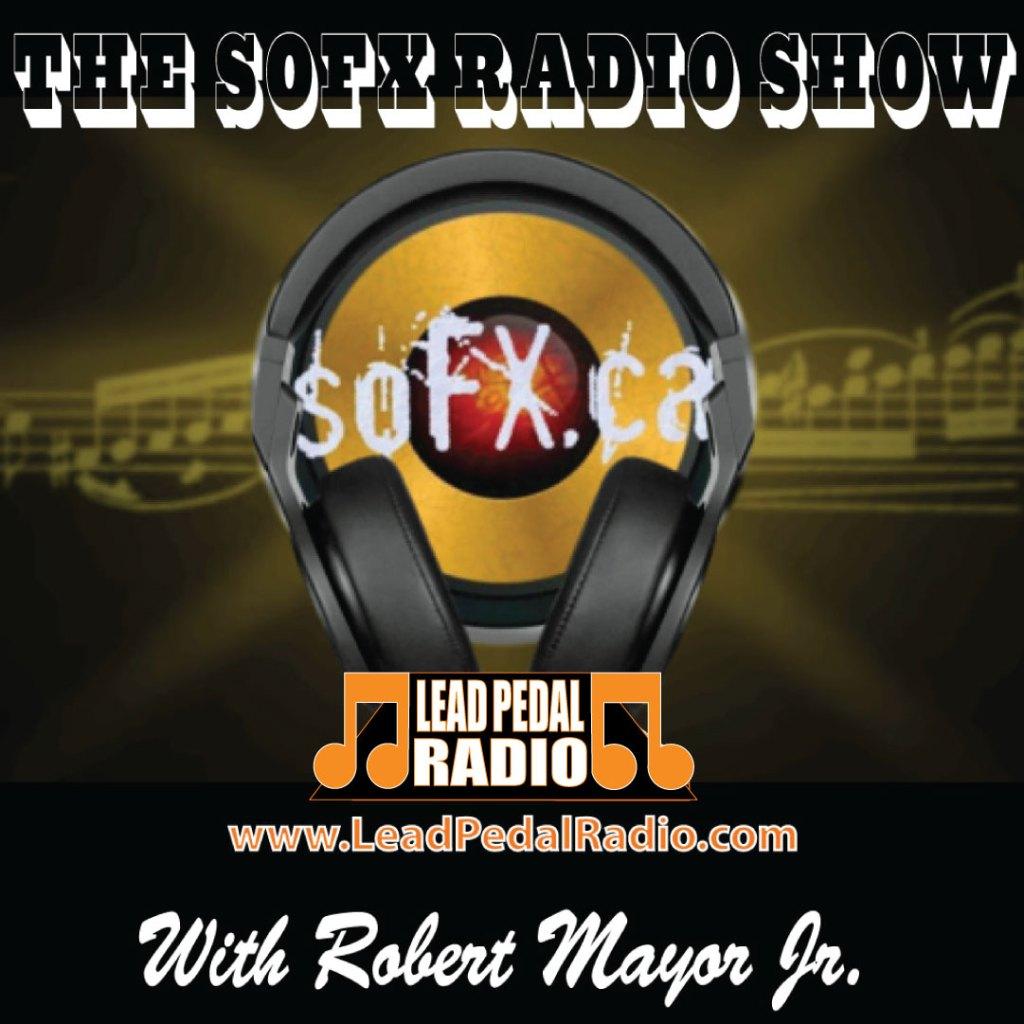 LP-Sofx-2021-Radio-buttons-copy