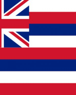 USA State Hawaii Business Email List, Sales Leads Database