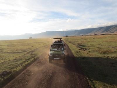 Safari Vacation Package: african safari