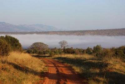 Kenya Safari Bush Drives