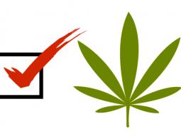 Legalizing-Cannabis