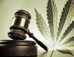 patent 6630507 marijuana_legal