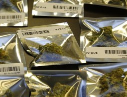 Cannabis entrepreneurs are taking on the challenge of packaging marijuana www.leafedin.org