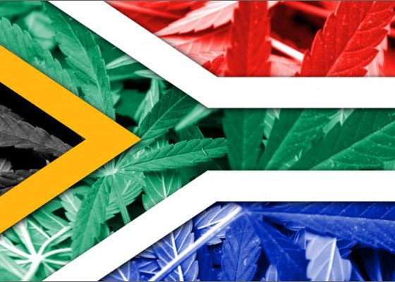 South Africa's Constitutional Court has ruled that personal use of marijuana is not a criminal offence