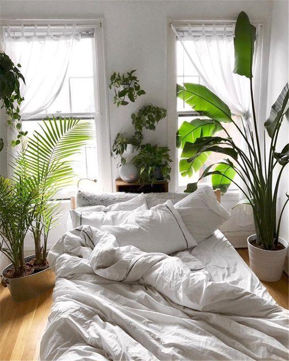 Rośliny doniczkowe w sypialni - Leaflo Design