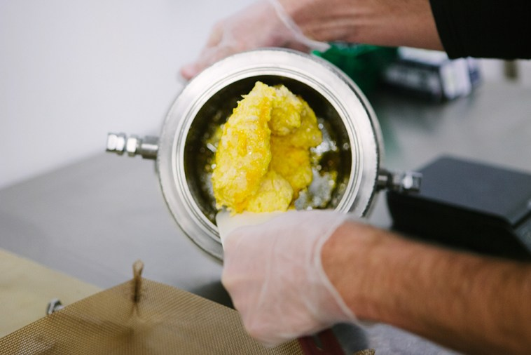 Cannabis oil extraction