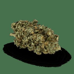 Leafly Garden Media Sativa 001