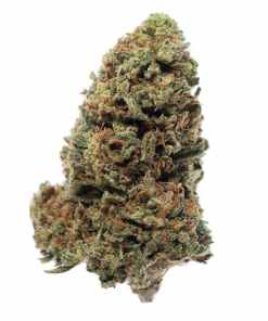 Super sour diesel for sale