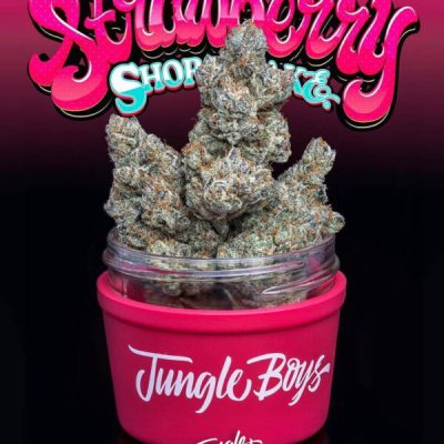 Jungle boys strawberry for sale