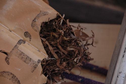 Eelgrass from Cabot\'s Quilt