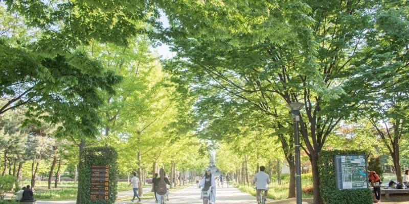 韓國首爾旅遊景點推薦,首爾林公園,Understand Avenue貨櫃屋,帶一杯咖啡漫步在城市裡的森林(2019.12更新)