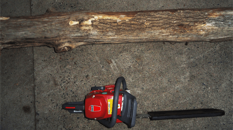 chainsaw and log