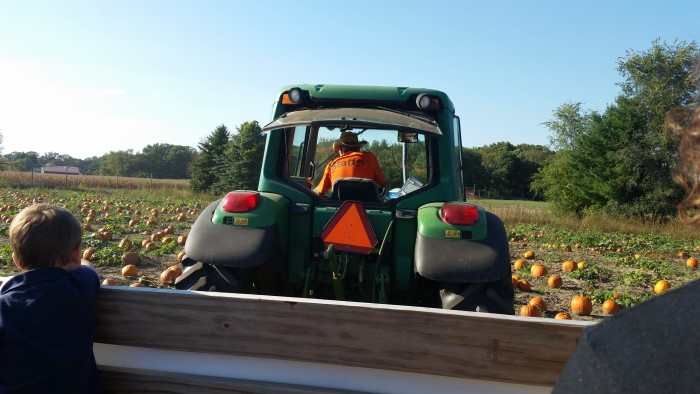 Waldoch Farm Pumpkin Patch tractor ride