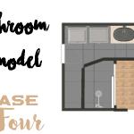 Bathroom Demo | Phase 4: The Big Kahuna