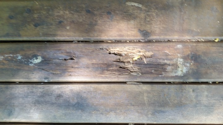 rotted porch board