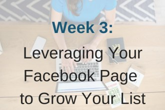 Module 3 in Limitless List enters the beginning of leveraging Facebook Ads.