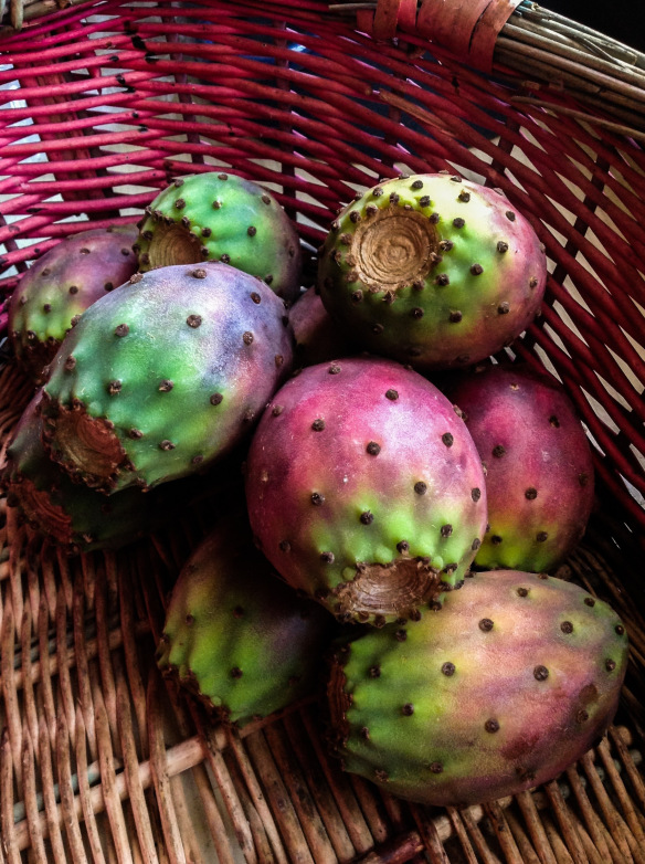 prickly pears time