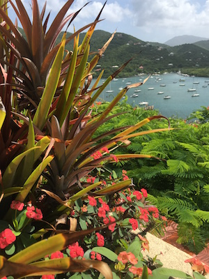 View from the patio of vacation rental home Into the Mystic of Coral Bay on St. John USVI