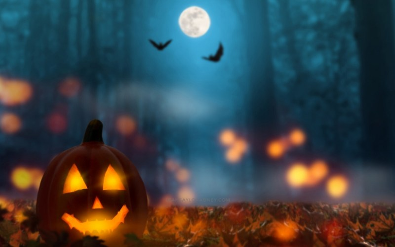 image post header october fall halloween