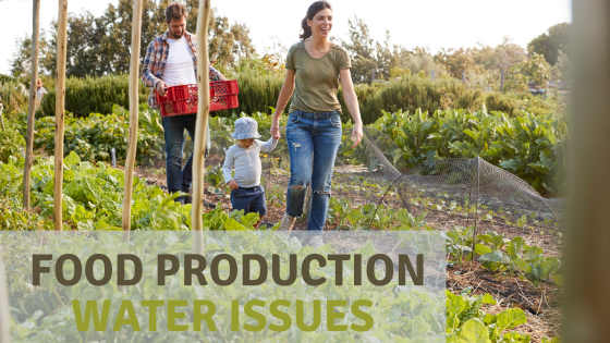 Agriculture and Associated Water Usage