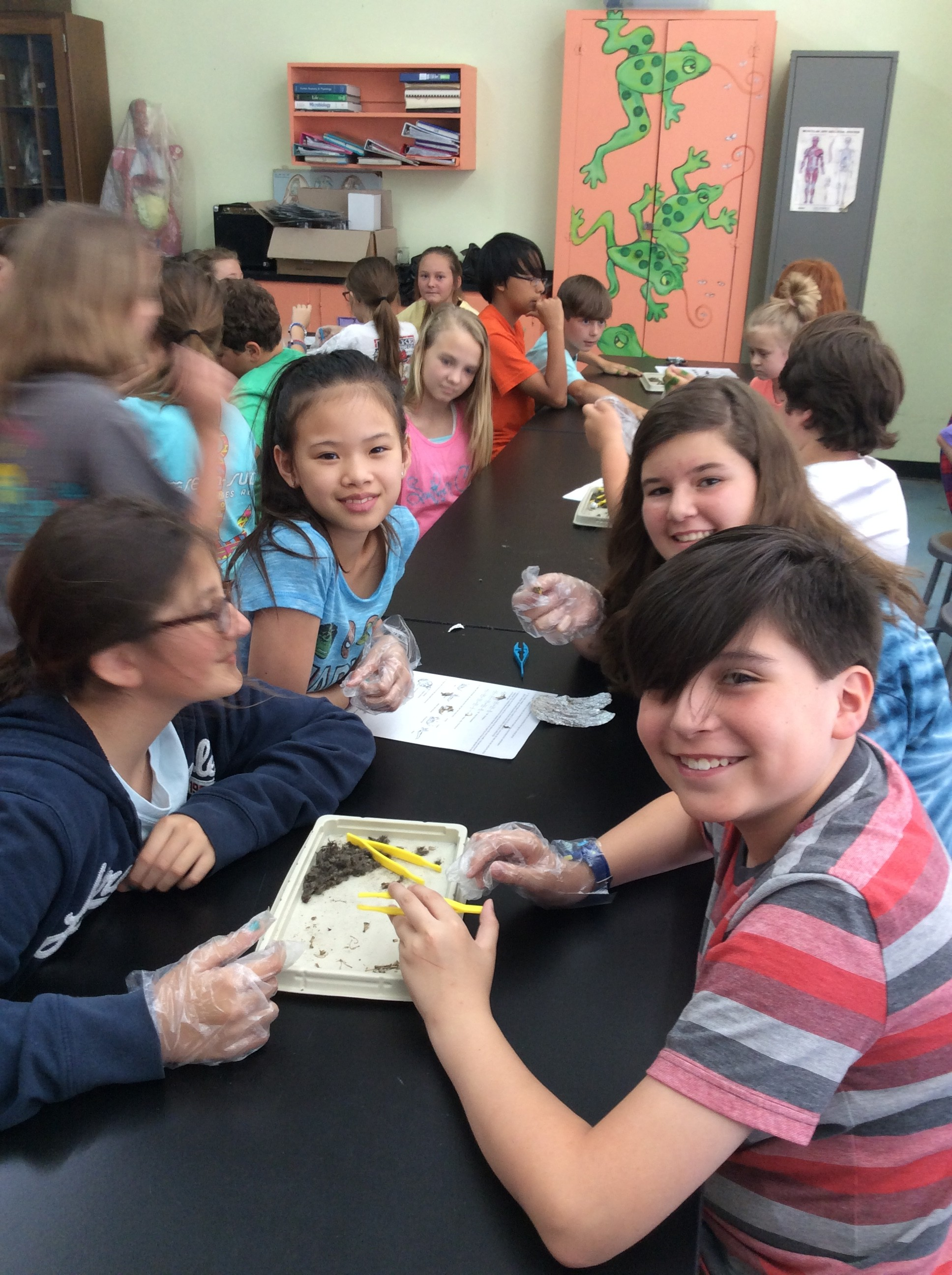 Fifth Graders Owl Pellet Dissection Leake Academy