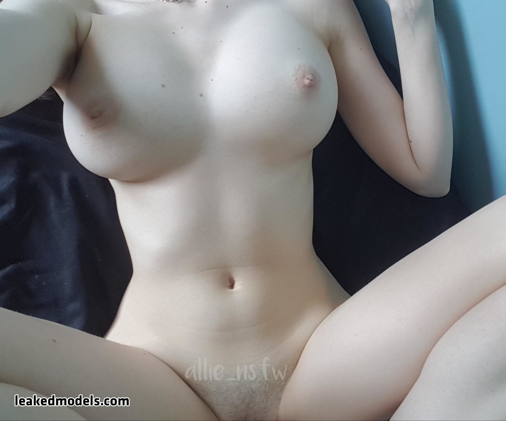 allie_nsfw OnlyFans Nude Leaks (23 Photos)