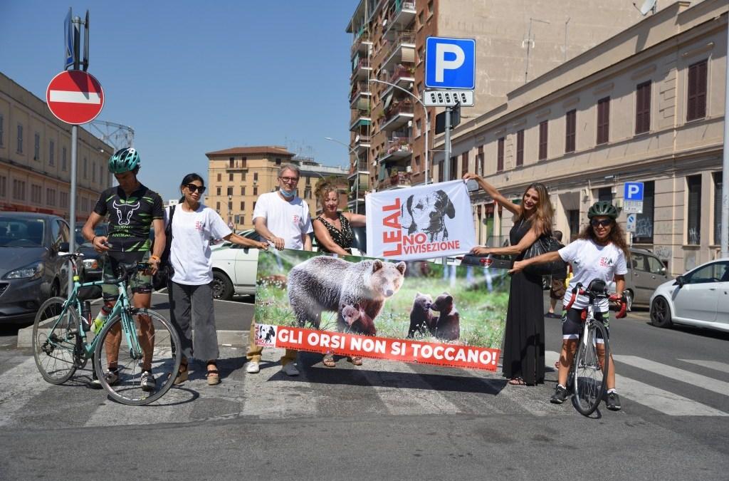 LEAL ANIMALISMO: PHOTOGALLERY E VIDEO DELL' EVENTO PER GLI ORSI A ROMA