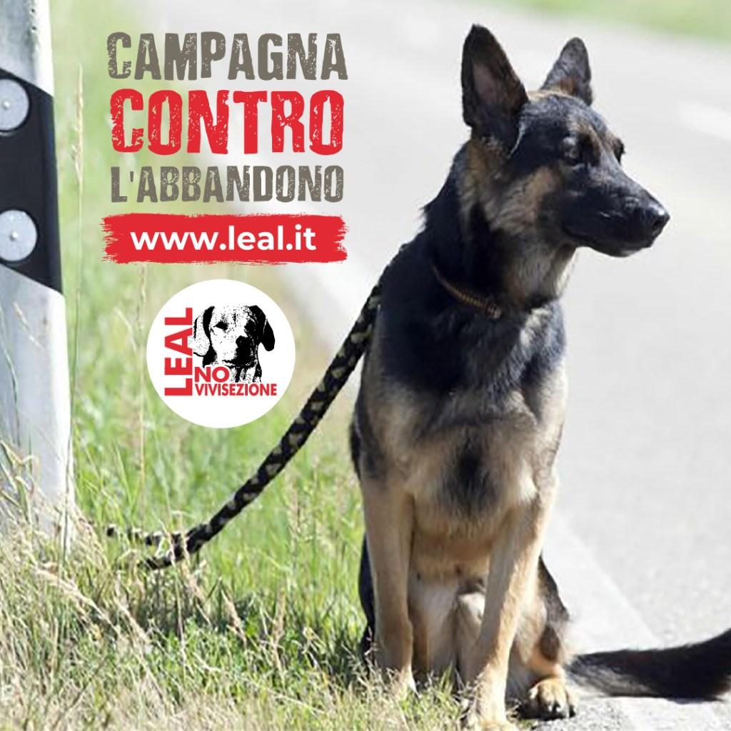 CAMPAGNA LEAL CONTRO L'ABBANDONO