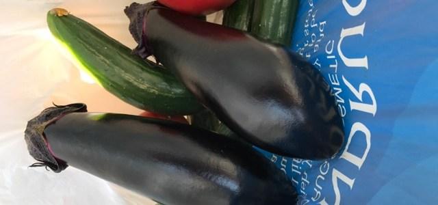夏野菜採りが終了致しました