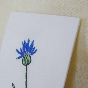 Bleuet / mini carte