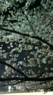 藤田 勇介のブログ-20100405201949.jpg